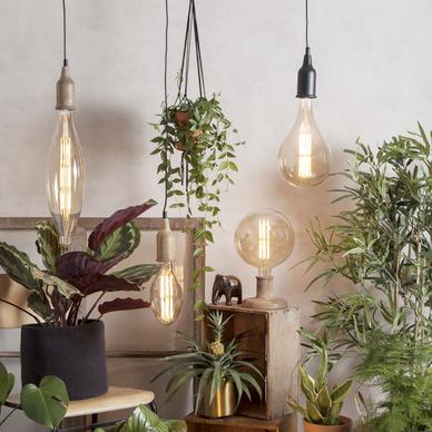 Lichtbronnen, binnenverlichting en buitenverlichting kopen op lumico.be
